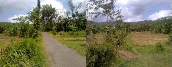 ... naiki mau mulai naik menuju desaku. Desaku dari sini naik sekitar 7 Km