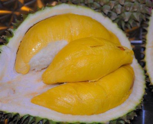 durian-creamy-tanpa-rasa-pahit-a