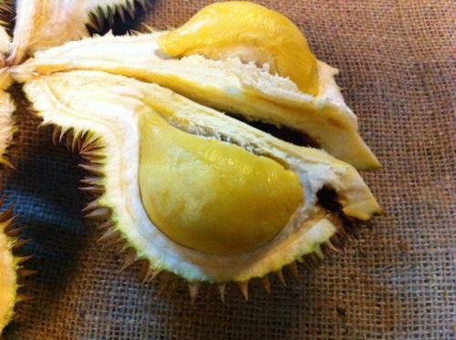 durian-creamy-tanpa-rasa-pahit-c
