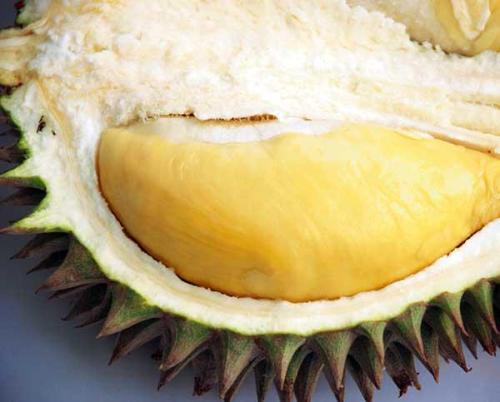 durian-creamy-tanpa-rasa-pahit-g